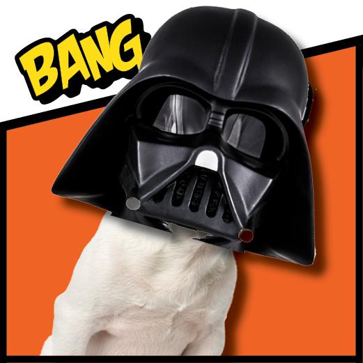 Meet Bark Vader