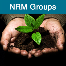 NRM groups